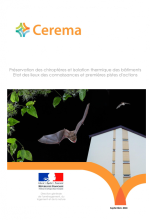 chiropteres et isolation thermique